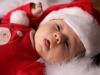babafotó karácsonyra